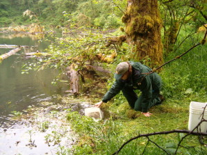 ODFW releasing fish into remote access lakes